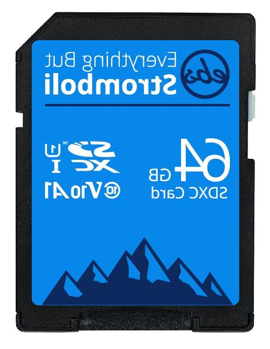 SD 8GB 256GB for Trail Cams